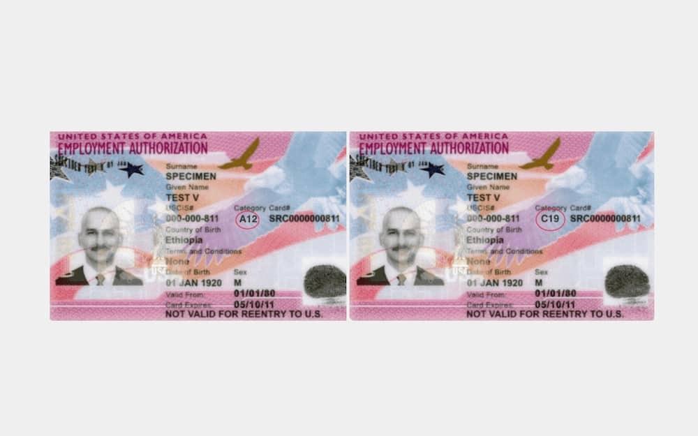 Anuncian extensión de permisos de trabajo para hondureños, nicaragüenses y salvadoreños en TPS